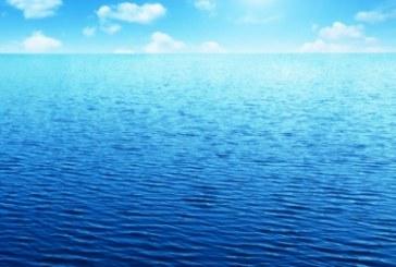 Uliveti e mare sono la nostra ricchezza. No al resort Sarparea