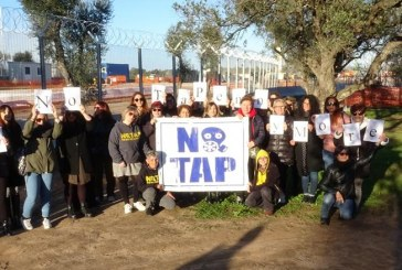 """Michele Carducci: Tap deve rispettare la """"democrazia ambientale"""""""