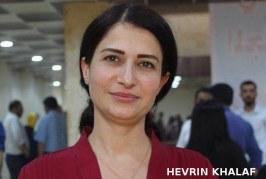 Riportami a Kobane. Voglio tornare a casa mia.