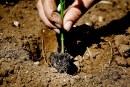 Permacultura: a Oria (Br) si guarda al futuro da un nuovo punto di vista