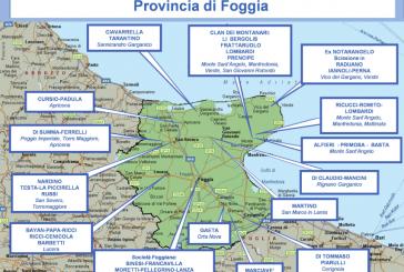 Foggia, Gargano e Tavoliere, la mappa dei gruppi mafiosi: omicidi, droga e infiltrazioni nei Comuni